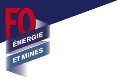 FNEM-FO Logo